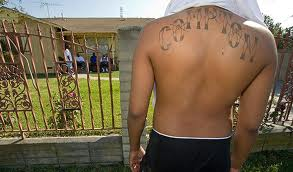 texas syndicate a gang and its Top 10 us prison gangs prison gangs were originally formed by inmates as a means to protect themselves from other inmates throughout the years, prison gangs have evolved from a group that provides protection to its members, to criminal entities involved in prostitution, assaults, drugs and murder.